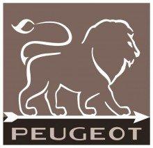 Peugeot Set Paris Pfeffermühle + Salzmühle u´select schoko/natur 22 cm -