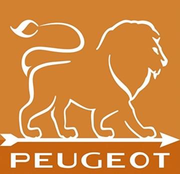 Peugeot Set Paris Pfeffermühle und Salzmühle | schoko natur 40 + 30 cm | Dekomiro Geschenkset mit 100 gr. Salz -