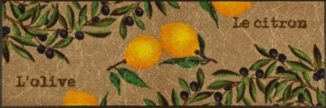 wash+dry Fußmatte Le Citron 60x180 cm -