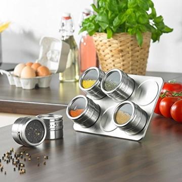 6 Tlg Gewürzständer magnetisch Gewürz-Regal Edelstahl Magnetständer Edelstahl-Magnettablett mit (6 Tlg) -