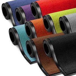 Schmutzfangmatte ColorLine | viele Größen und Farben zur Auswahl | Fußmatte für Innenbereich | Mono Color Rot 60x180 cm - 1